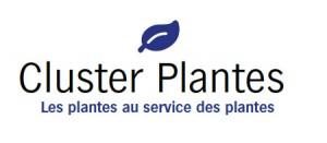Cluster Plantes